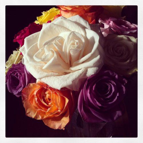 Bouqs Flowers Review Fine Art Mom
