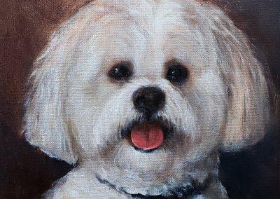 oil painting pet portrait